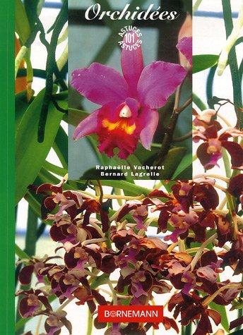 9782851826596: Les orchidées