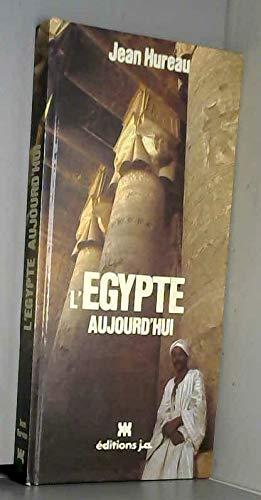 9782852581357: l'egypte aujourd'hui