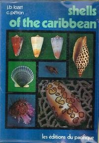 9782857000426: Shells of the Caribbean