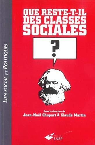 9782859528683: Que reste-t-il des classes sociales ?