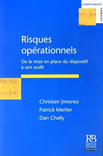 9782863254851: Risques opérationnels : De la mise en place du dispositif à son audit