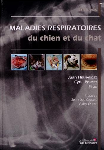 Maladies respiratoires du chat et du chien