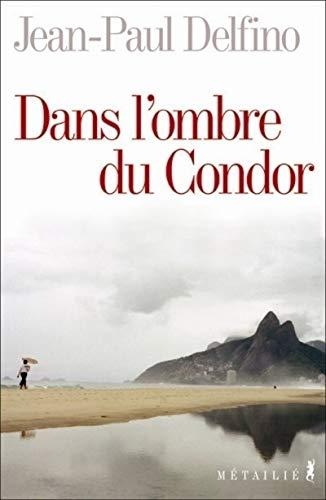 Dans l'ombre du Condor: Delfino, Jean-Paul