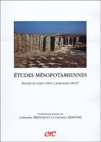 9782865382804: Etudes mésopotamiennes (French Edition)