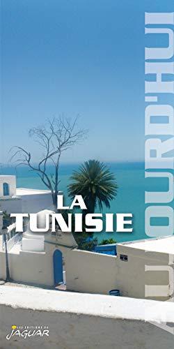 9782869504738: la tunisie aujourd'hui