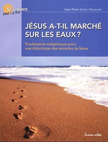 9782873244194: jesus a t il marche sur les eaux ?