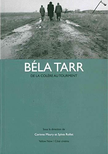9782873403737: B�la Tarr : De la col�re au tourment