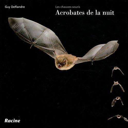 9782873867287: Les chauves-souris acrobates de la nuit