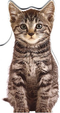 9782874310188: Nougat le chaton