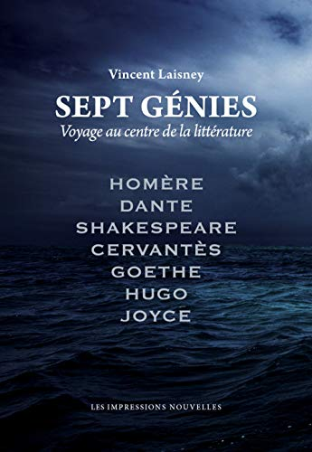 Sept g?nies - Voyage au centre de la litterature: Laisney, Vincent