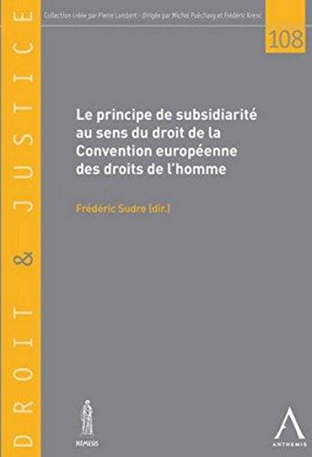 Principe de Subsidiarite au Sens de la Convention Europeenne des Droits de l'Homme (le): ...