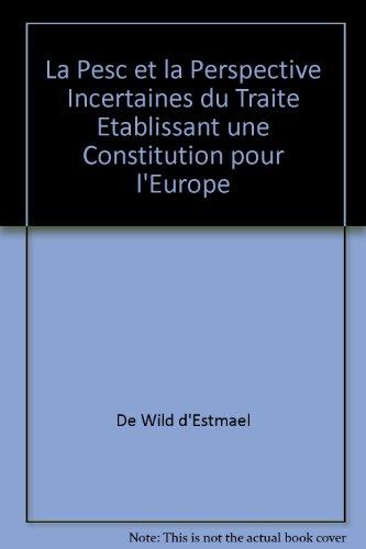La PESC et la perspective incertaine du: Tanguy de Wilde