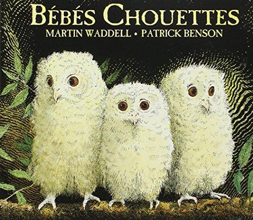 9782877678612: Bebes Chouettes Tout Carton