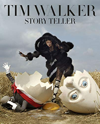9782878113952: Story Teller (French Edition)