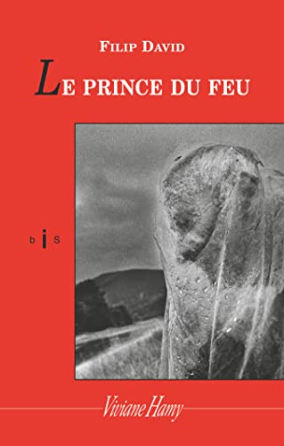 9782878583649: Le prince du feu