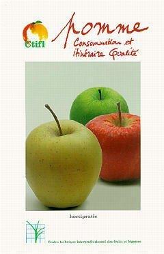 9782879110943: POMME CONSOMMATION ET ITINERAIRE QUALITE