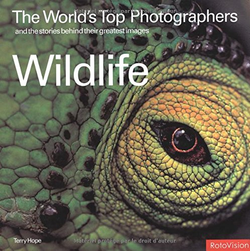 9782880466893: The Worlds Top Photographers and the Stories Behind Their Greatest Images: Wildlife