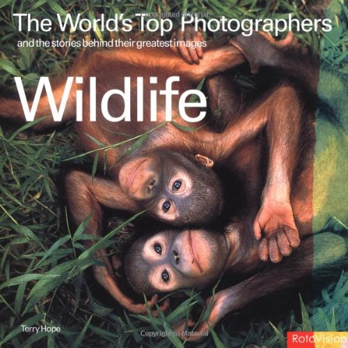 9782880468033: Wildlife: The World's Top Photographers and the stories behind their greatest images