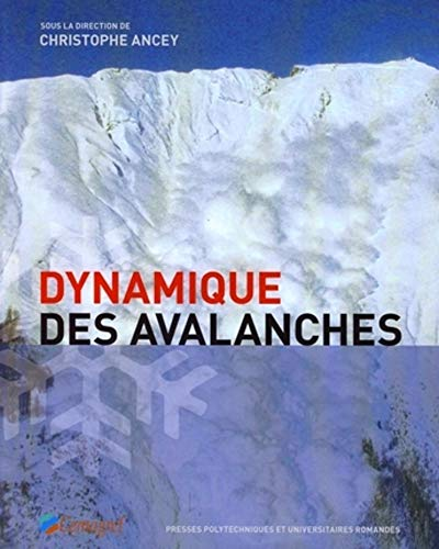 9782880746483: Dynamique des avalanches (French Edition)