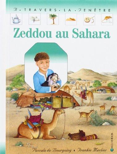 9782884454667: Zeddou au Sahara