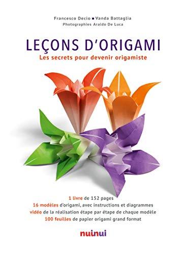 Leçons d'Origami Les secrets pour devenir origamiste
