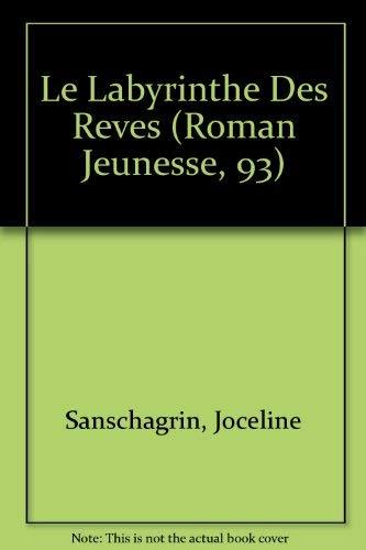 9782890214095: Le Labyrinthe Des Reves (Roman Jeunesse, 93) (French Edition)