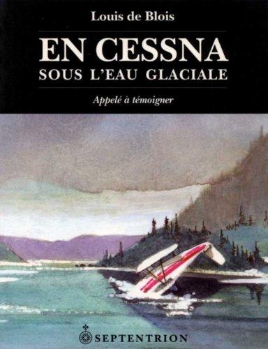 En Cesna sous l'eau glaciale: n/a