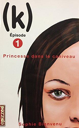 9782896511495: La Princesse Dans le Caniveau