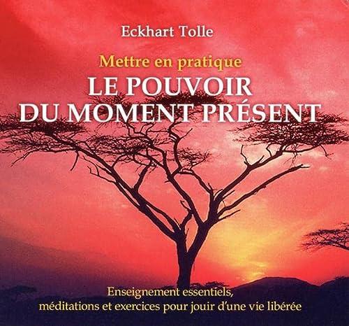 METTRE EN PRATIQUE POUVOIR MOMENT - CD: TOLLE ECKHART - NED