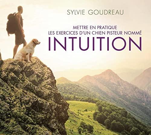 INTUITION METTRE EN PRATIQUE - CD AUDIO: GOUDREAU SYLVIE
