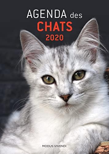 9782897761479: Agenda des chats
