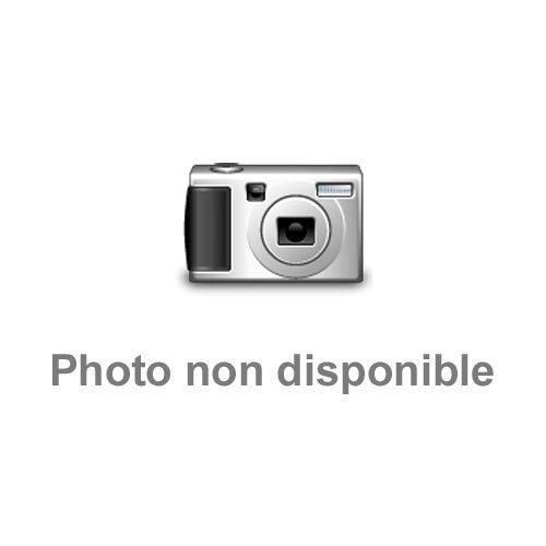 9782904732126: Trans-positif négatif (French Edition)