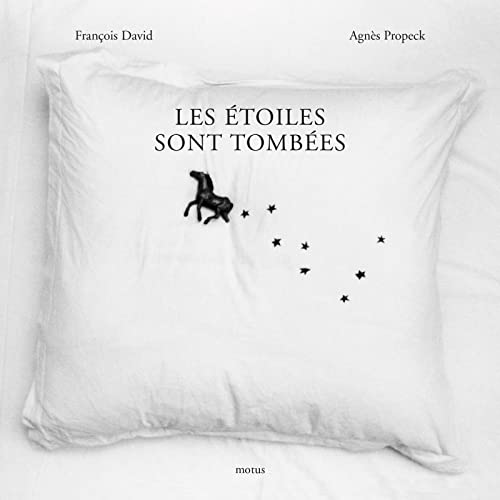 Les etoiles sont tombees: David Francois