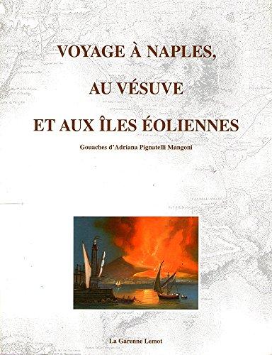 9782907908382: Voyage à Naples, au Vésuve et aux îles Éoliennes : Exposition, Villa Lemot, 18 avril- 5 octobre 2003, Gétigné-Clisson