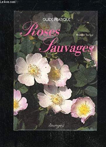 Roses sauvages: Becker,Monika