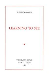 9782910055004: Antony Gormley, Learning to See