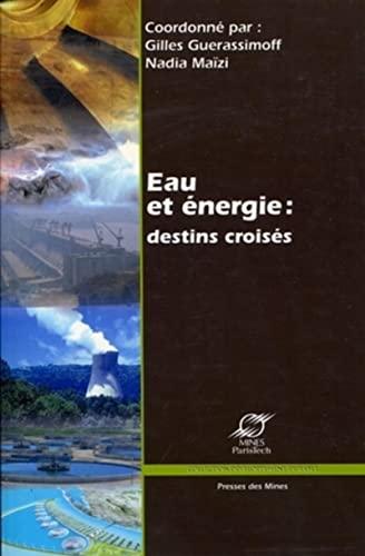 Eau et Energie : destins croisés: Gilles Guerassimoff, Nadia Maïzi
