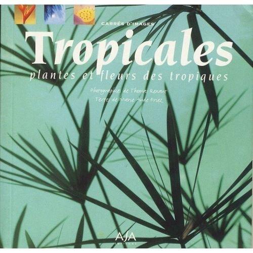 9782911589829: Tropicales Plantes et fleurs des tropiques