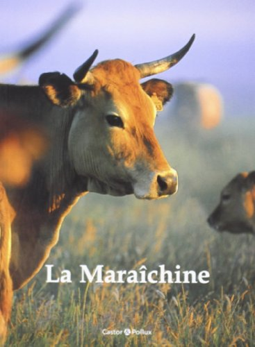 MARAICHINE -LA-: COLLECTIF