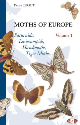 9782913688070: Moths of Europe, Volume 1, Saturnids, Lasiocampids, Hawkmoths, Tiger Moths ...