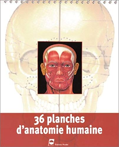 9782913996250: 36 Planches d'anatomie humaine
