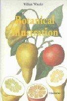 9782914199339: Botanical Illustration