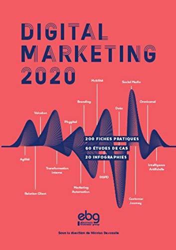 9782914901246: Digital Marketing 2020
