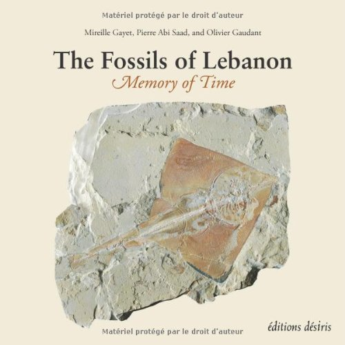 9782915418972: Fossils of Lebanon The (French Edition)