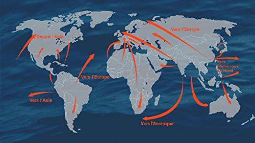 9782917799130: migrations : les sentiers de la mondialisation