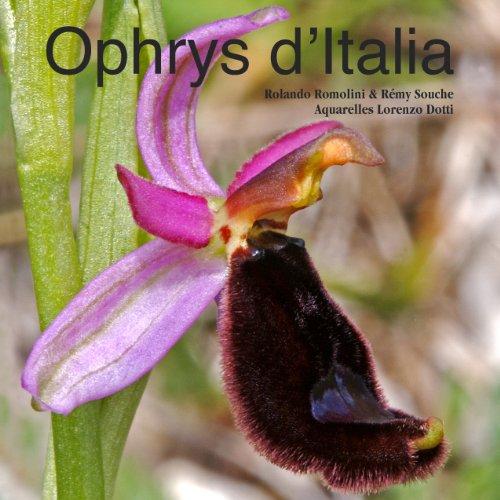 9782918075028: Ophrys d'Italia