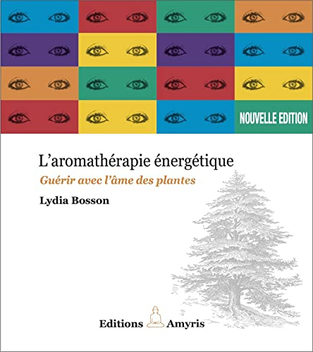 9782930353869: Aromathérapie énergique - Guérir avec l'âme des plantes