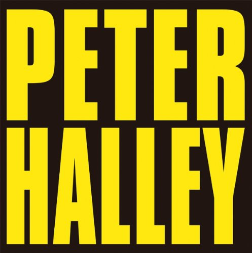 Peter Halley: Since 2000: Melvin, Jo