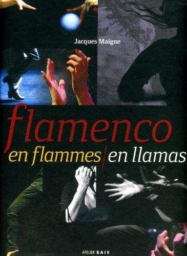9782953254631: Flamenco en Flammes/en Llamas