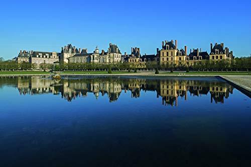 9782953679656: Fontainebleau : La vraie demeure des rois